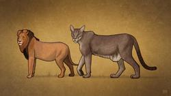 cryptozoologicon, cryptids, cats, africa