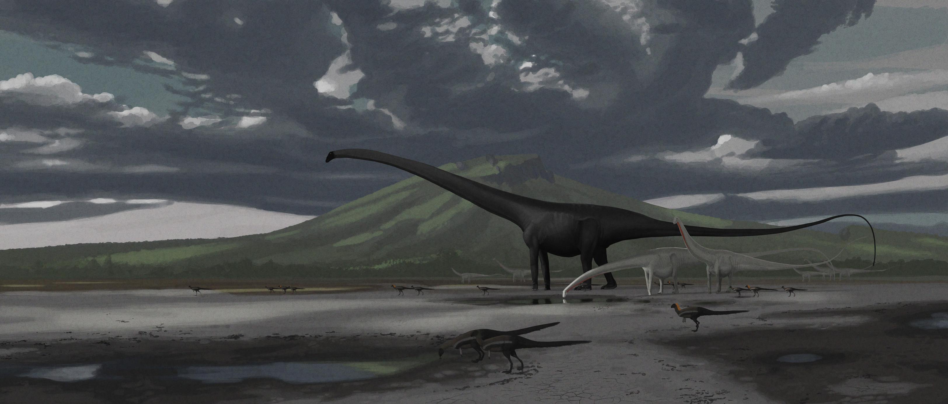 barosaurus_diplodocus_dryosaurus.jpeg