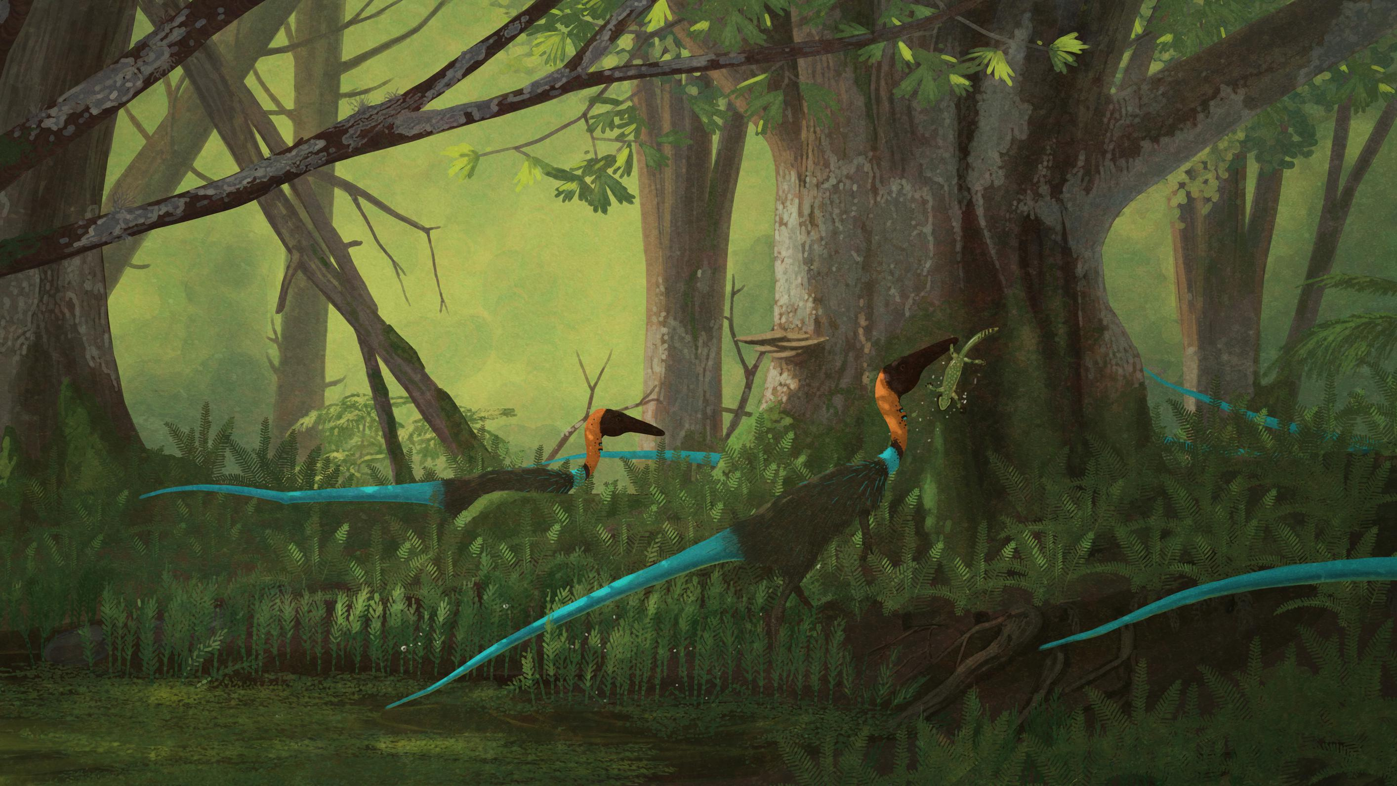 coelophysis, palaeo, painting, paleo, dinosaurs, theropods, mesozoic, triassic, feathered dinosaurs