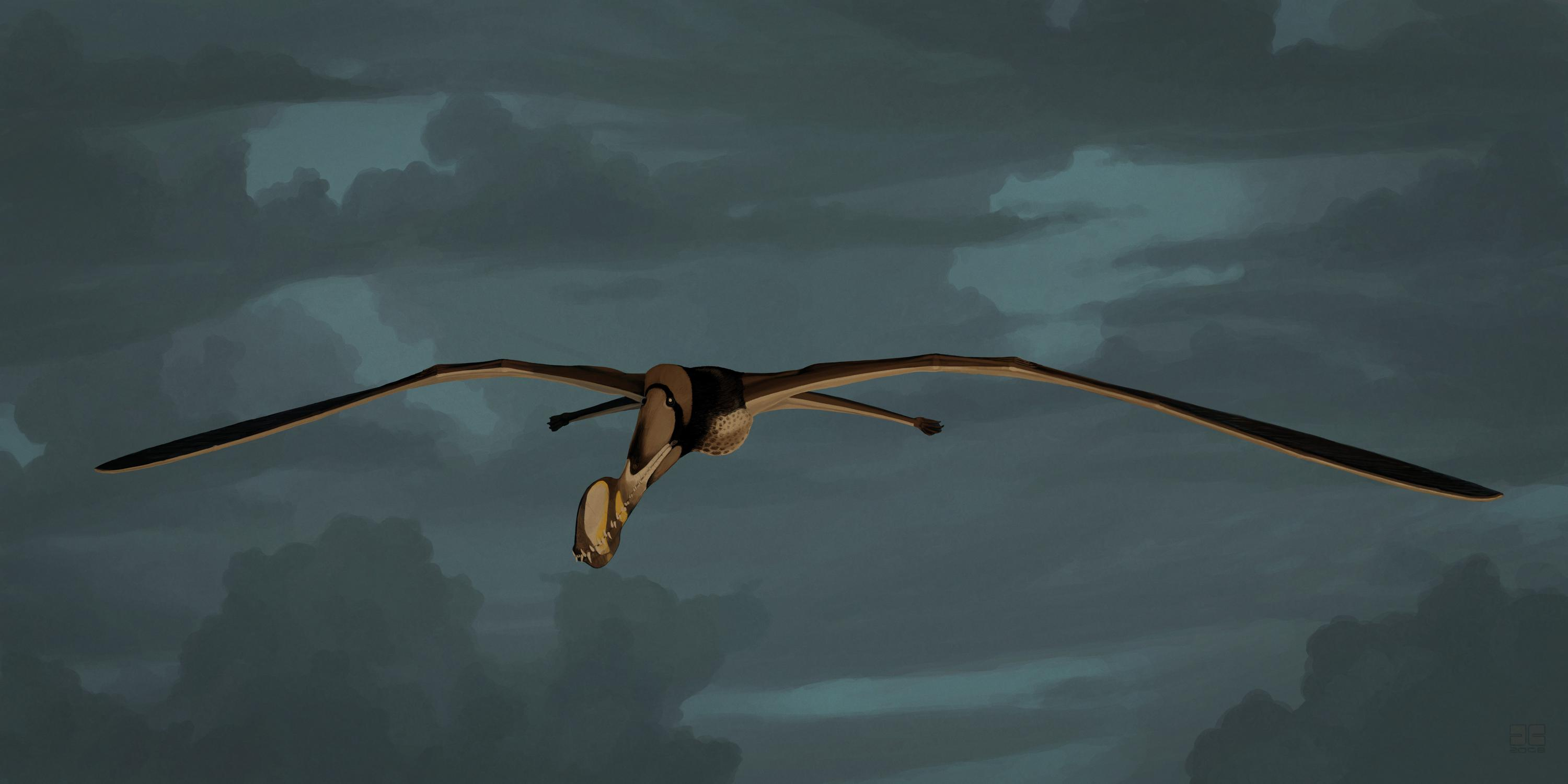 palaeo, painting, paleo, pterosaurs, south america