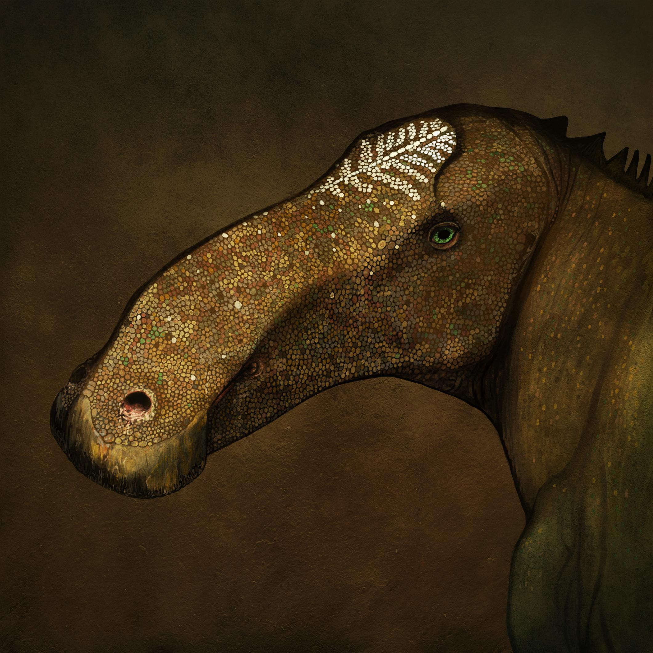 palaeo, dinosaurs, painting, jurassic, hadrosaurs, duck-billed, duckbilled, ornithiscians, palaeo-portraits