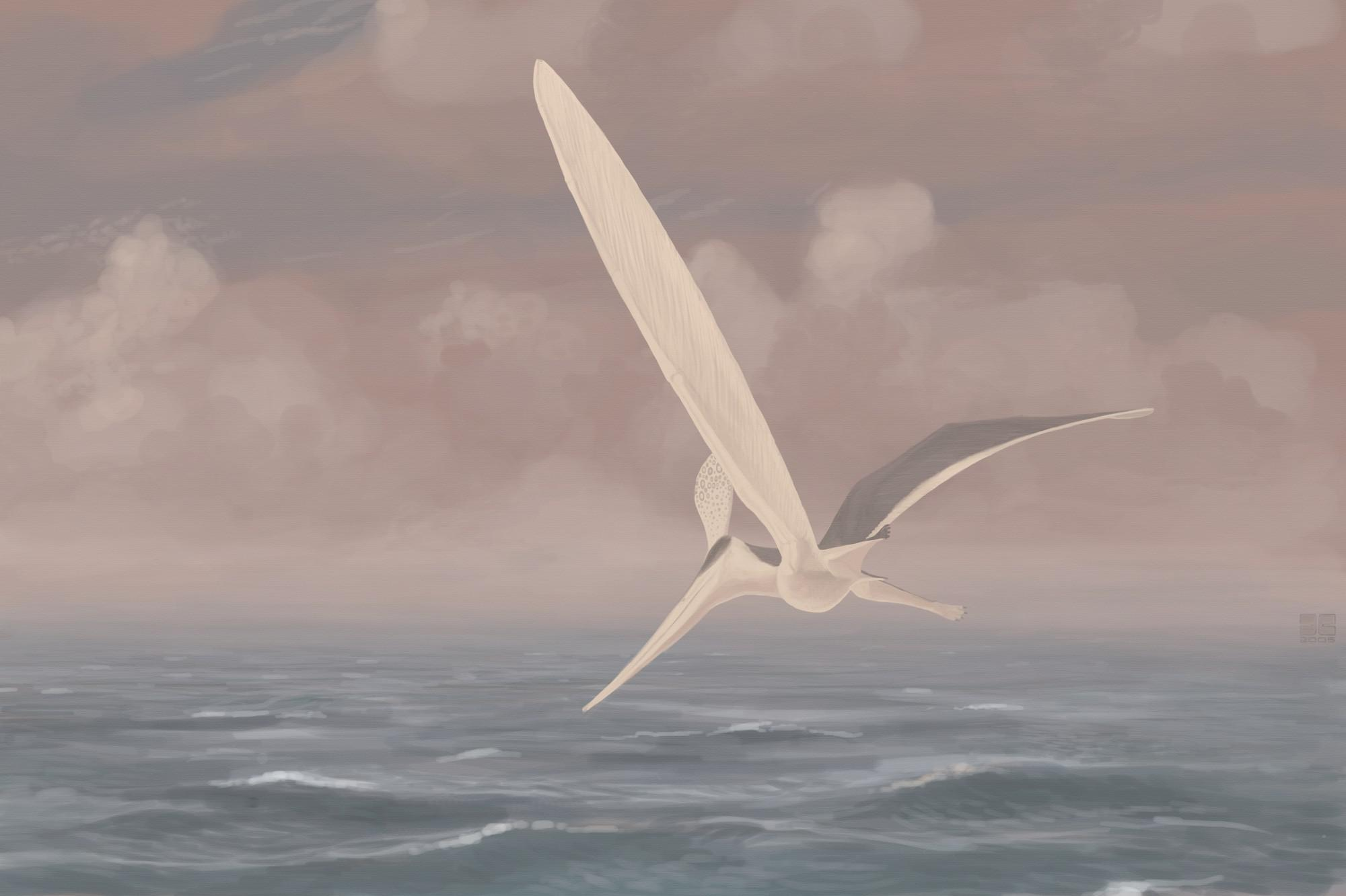 palaeo, painting, paleo, pterosaurs, north america