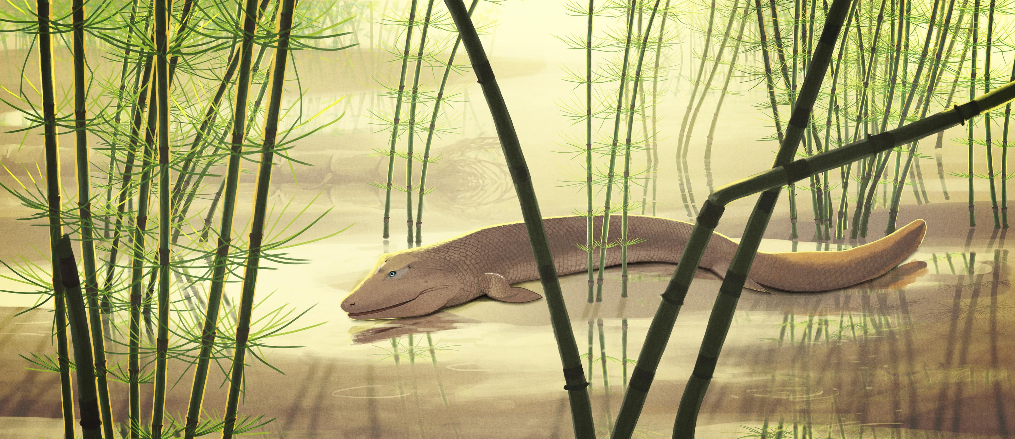 palaeo, painting, fish, transitional, canada, north america, devonian, old blue eyes